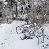 Bicycles in winter Royalty Free Stock Image