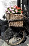 Bicyclette antique, avec des fleurs Photographie stock libre de droits