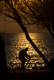 Bicyclette contre le coucher du soleil Photo libre de droits