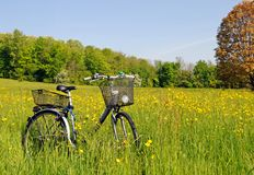 Bicyclette dans l'herbe Photos stock