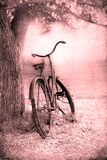 Bicyclette dans la campagne photos stock