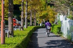 Bicyclette de monte de personnes dans Inagi-shi, Tokyo Photos libres de droits
