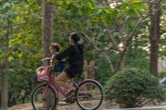 Bicyclette de recyclage de personnes en parc pour l'exercice Images stock