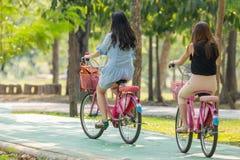 Bicyclette de recyclage de personnes en parc pour l'exercice Photo libre de droits