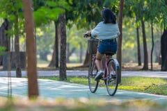 Bicyclette de recyclage de personnes en parc pour l'exercice Photos libres de droits