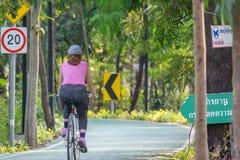 Bicyclette de recyclage de personnes en parc pour l'exercice Images libres de droits