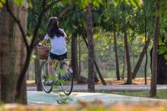 Bicyclette de recyclage de personnes en parc pour l'exercice Photographie stock