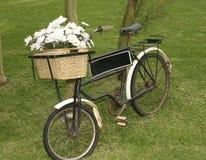 Bicyclette de Rose Photo libre de droits