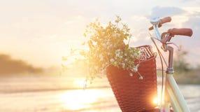 Bicyclette de vintage avec des fleurs dans le panier sur le coucher du soleil d'été Image libre de droits