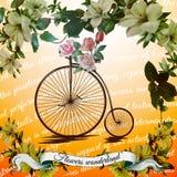 Bicyclette de vintage avec la fleur Image stock