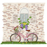 Bicyclette, fenêtre, et cep de vigne roses Image stock