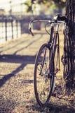 Bicyclette fixe de vitesse de route de vélo Images libres de droits