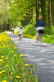 Bicyclette heureuse d'équitation de famille au parc Photographie stock