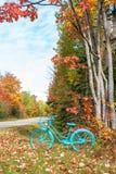 Bicyclette peinte par cru en automne photos libres de droits