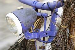 Bicyclette pourpre avec la lavande Images stock