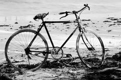 Bicyclette sur la plage, Zanzibar photo libre de droits