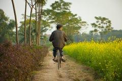 Bicyclette vietnamienne d'équitation d'homme Photographie stock