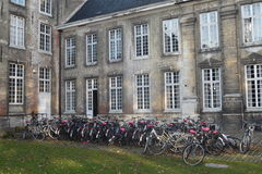 Bicyclettes à l'université Louvain du ` s de pape Photos libres de droits