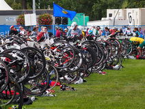 Bicyclettes au triathlon Photographie stock libre de droits