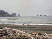 Bicyclettes d'équitation sur la plage Photo libre de droits