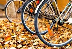Bicyclettes dans des feuilles d'automne Photographie stock libre de droits