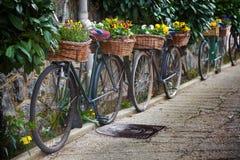 Bicyclettes de cru avec des groupes de fleurs Image stock