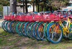 Bicyclettes de Google sur le campus de Google Images libres de droits