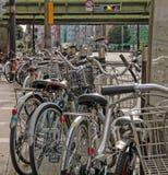 Bicyclettes garées le long du côté de la voie images libres de droits