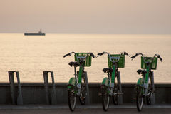 Bicyclettes pour le loyer à Batumi Images stock