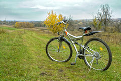 Bicycling Zdjęcia Stock