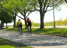 Bicycling in een park Royalty-vrije Stock Foto's