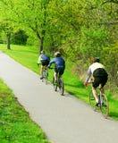 Bicycling em um parque Fotografia de Stock
