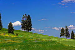 Bicycling in hilly Allgau landscape at spring Royalty Free Stock Photos