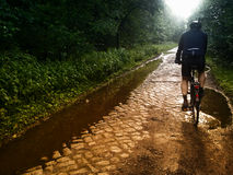 Bicycling op kasseisteenweg Royalty-vrije Stock Afbeelding