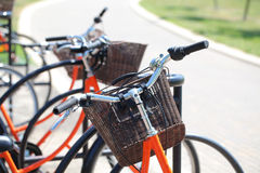 Bicycling in the park. Orange road bike with a basket at the helm.Bicycle in a park in the parking lot royalty free stock images
