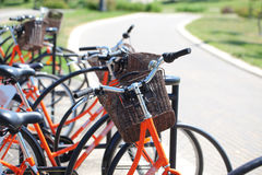 Bicycling in the park. Orange road bike with a basket at the helm.Bicycle in a park in the parking lot royalty free stock image