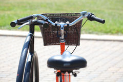 Bicycling in the park Stock Photography