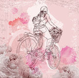 Bicyclist girl on abstract background Royalty Free Stock Photo