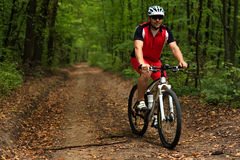 Bicyclist with His Bicycle in the Summer Forest Stock Images