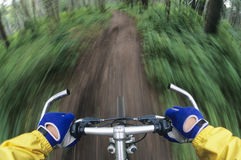 Bicyclist Maneuvering Path Through Forest. Closeup of a cropped bicyclist maneuvering down path through forest royalty free stock images
