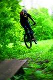 Bicyclist na madeira Imagem de Stock Royalty Free