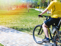 Bicyclist rides on the road in city park. Sunny summer hot day Royalty Free Stock Photo