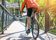 Bicyclist rides on the road in city park. Sunny summer hot day Royalty Free Stock Images