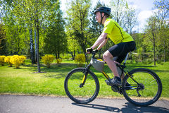Bicyclist rides on the road in city park. Sunny summer hot day Royalty Free Stock Photos