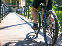 Bicyclist rides on the road in city park. Sunny summer hot day Royalty Free Stock Image