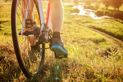 Bicyclist riding down the field to the river. At sunset stock photography