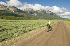 Bicyclist riding through spring flowers and mountains in Centennial Valley near Lakeview, MT Stock Photography