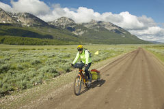 Bicyclist riding through spring flowers and mountains in Centennial Valley near Lakeview, MT Royalty Free Stock Photos