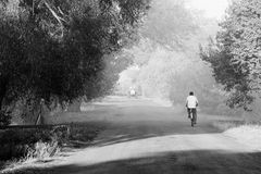 Bicyclist on road Royalty Free Stock Images