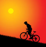 Bicyclist silhouette. Vector Royalty Free Stock Image